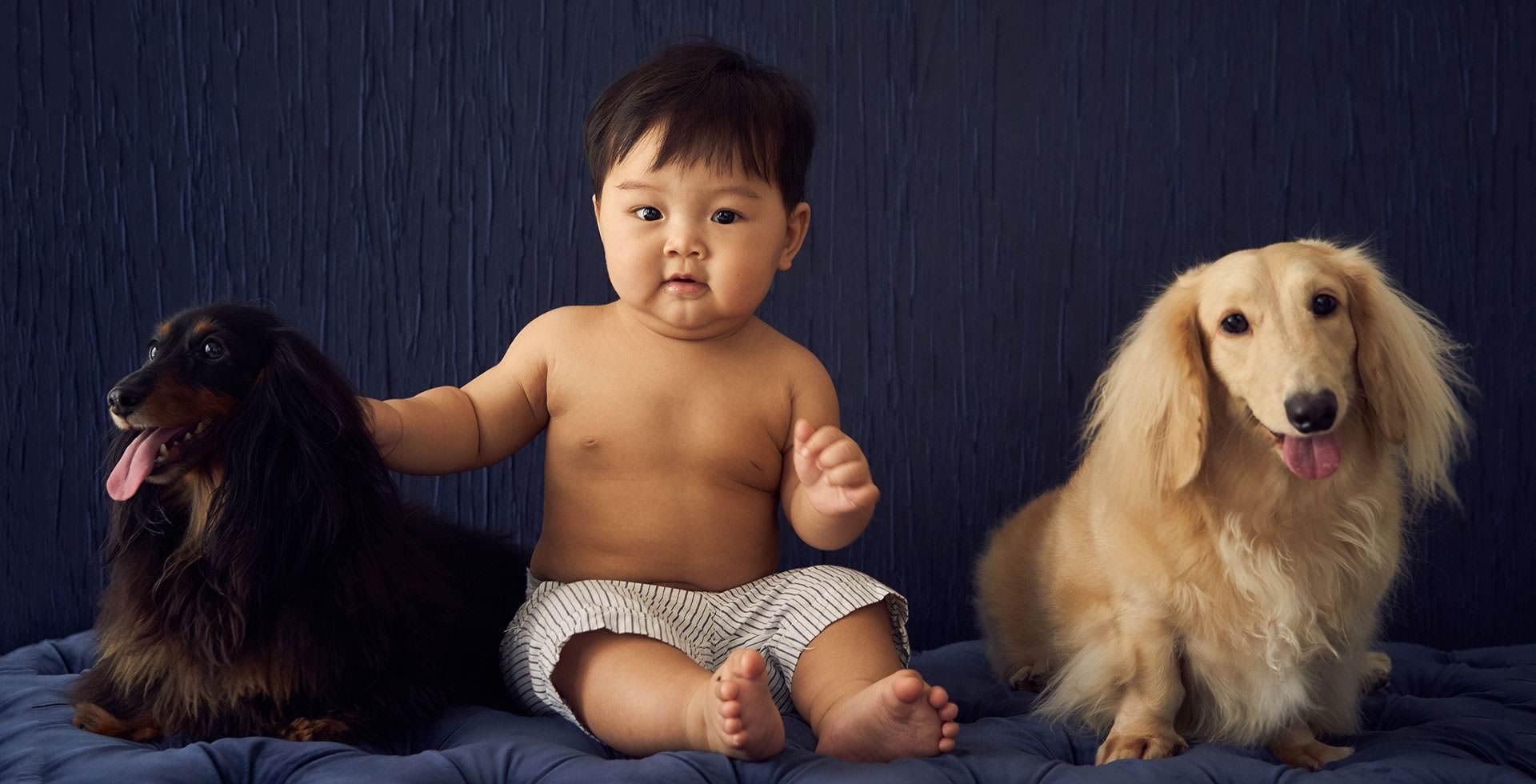 Pet Family Photoshoot