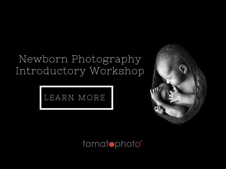 Newborn Workshop Tomato